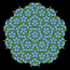500px-Penrose_Tiling_(Rhombi)